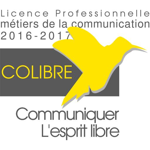 Projets tuteurés CoLibre 2017 : Les soutenances (jeudi 6 avril 2017)