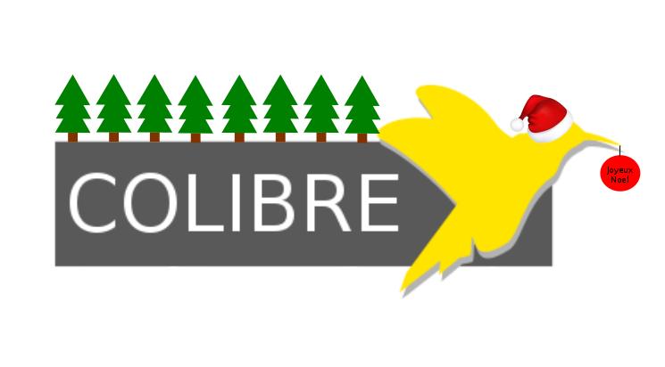 5 choses à faire pour fêter un bon Noël Colibriens