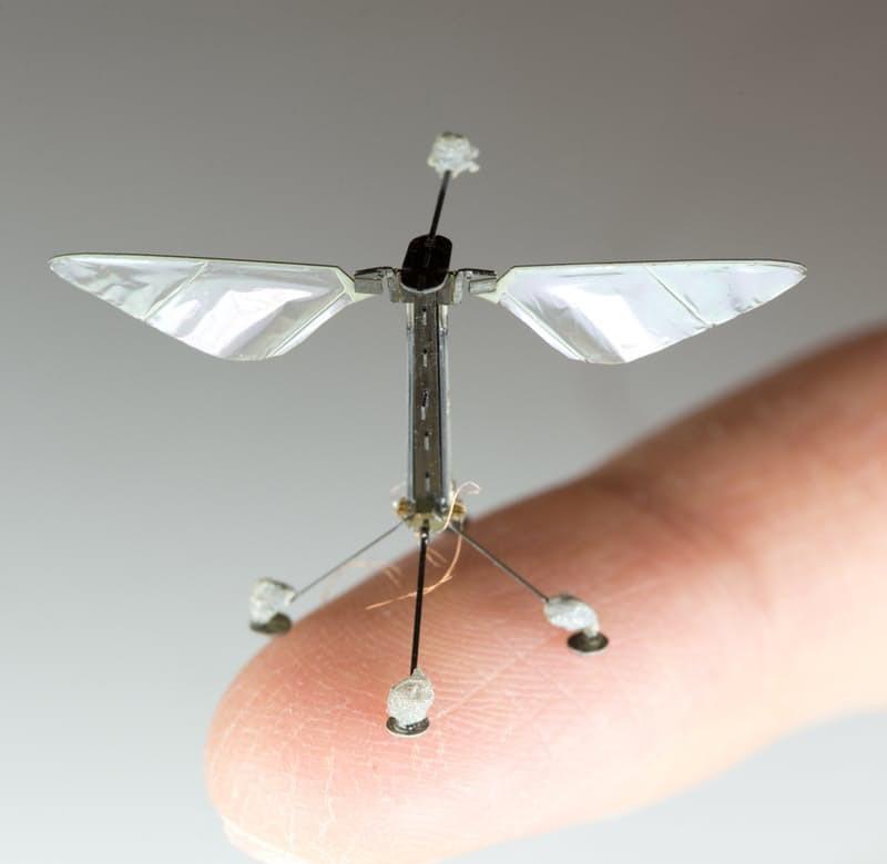 Des drones pollinisateurs pour subvenir à la disparition des abeilles