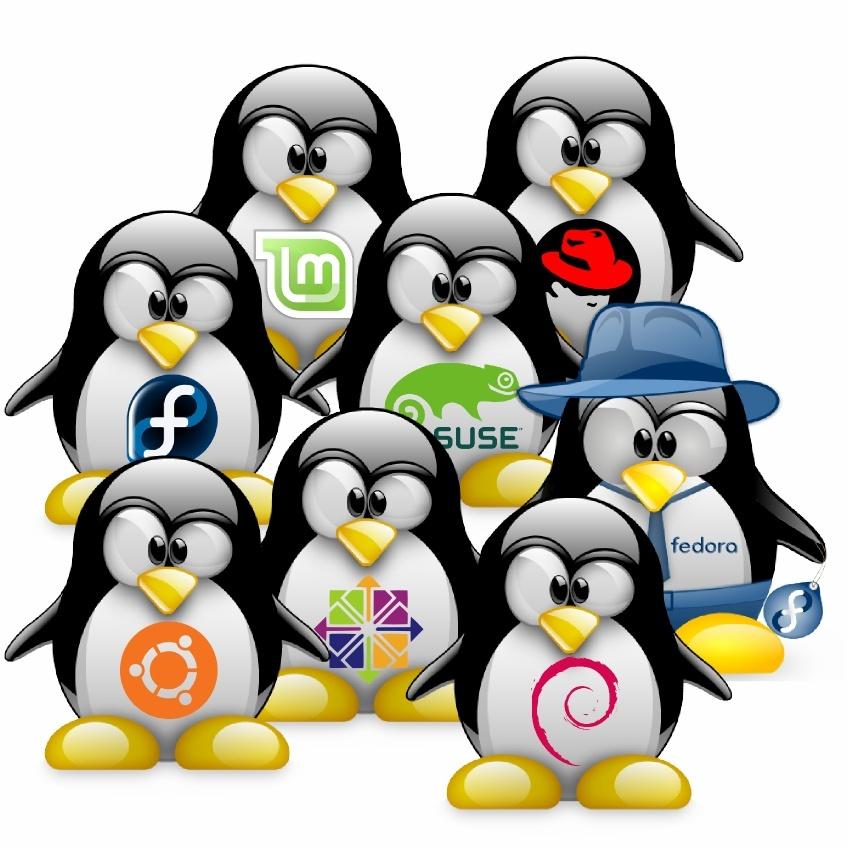 versions linux